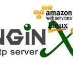 nginx_logo copy