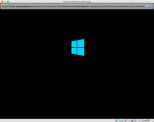 Windows10Preview__Running_