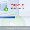 Oracle SQL Developer でConnections(接続)が表示されなくなった